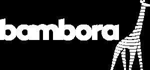 Bambora logo White